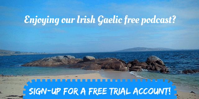 Bitesize Irish Gaelic Trial 1